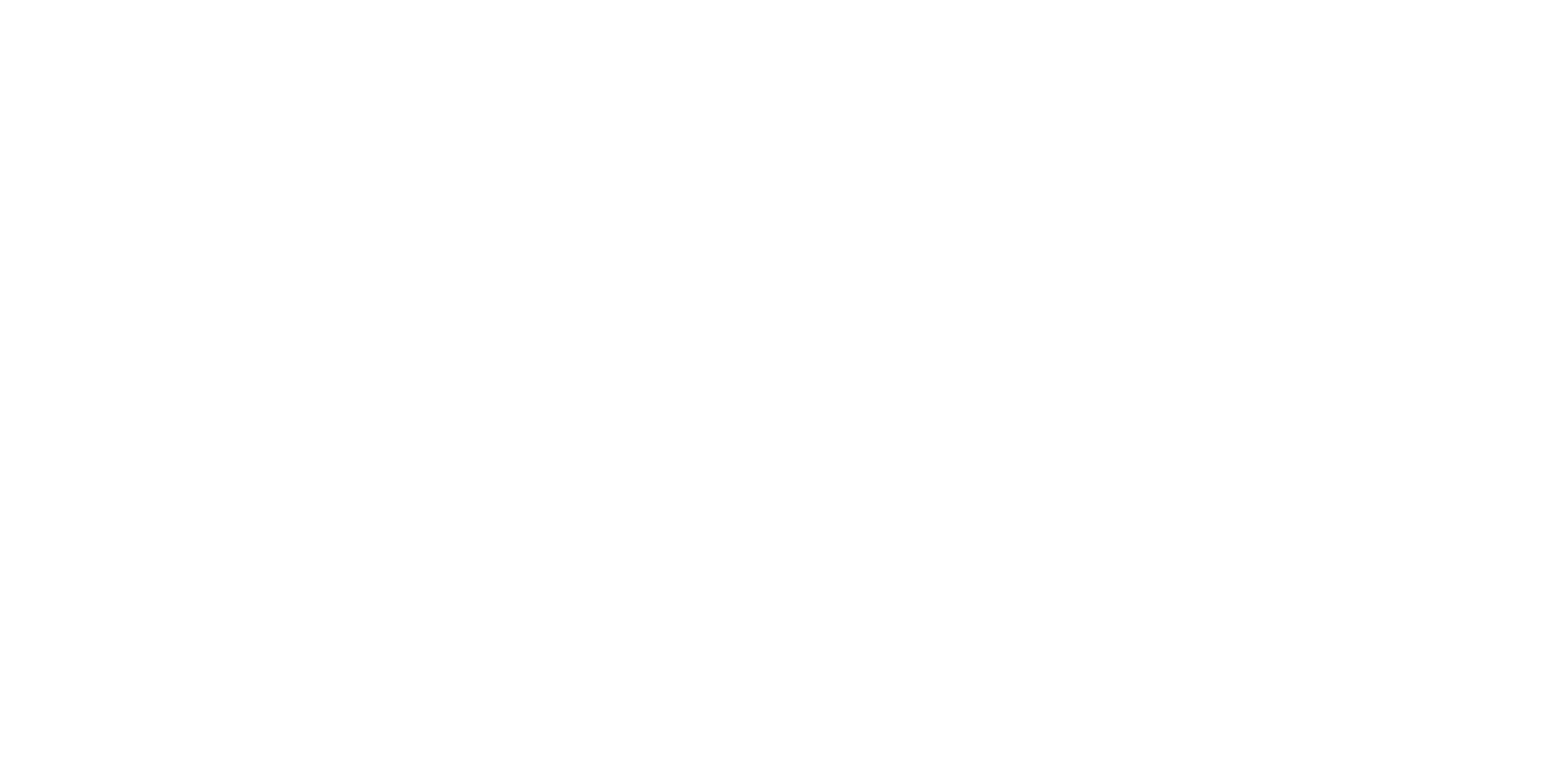 Logo H4D white